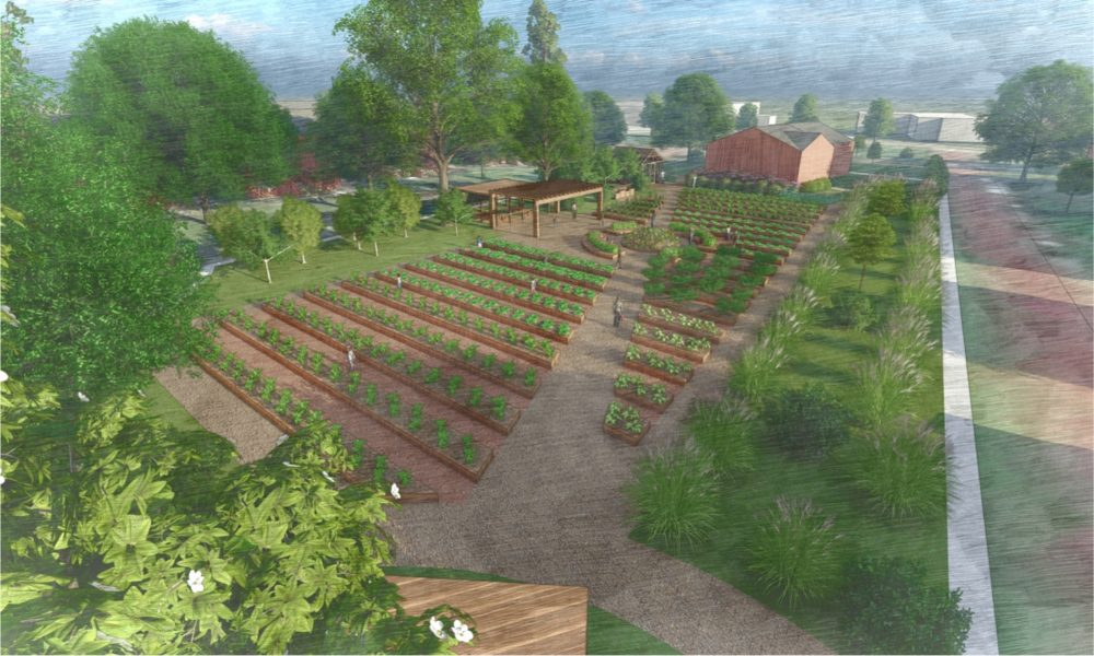 Announcing the campaign to build The Urban Farm at Enston Home