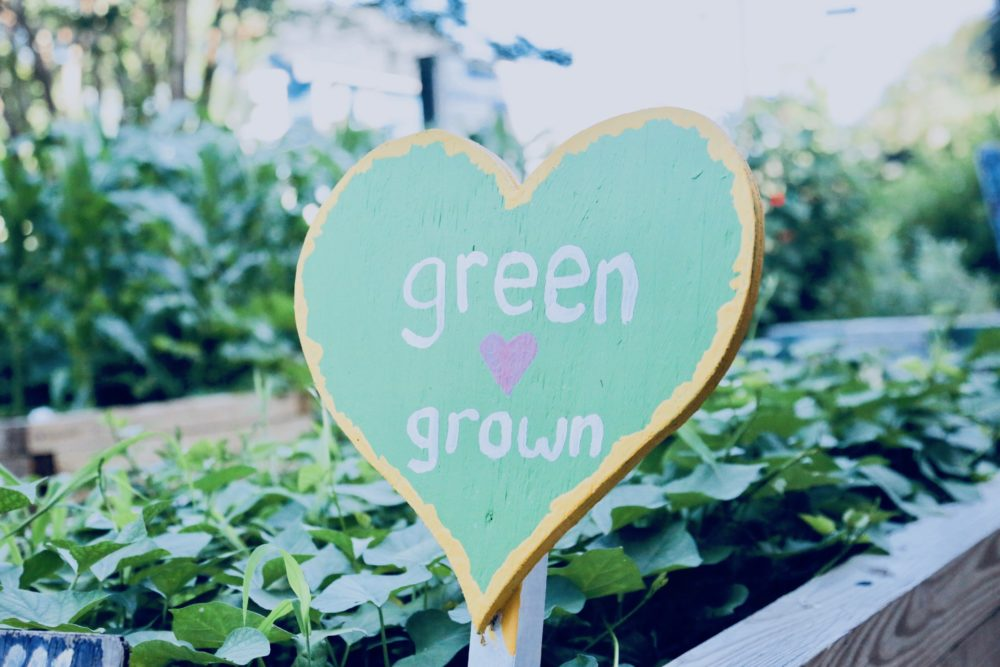 Launching our First Online Series: Green Heart at Home