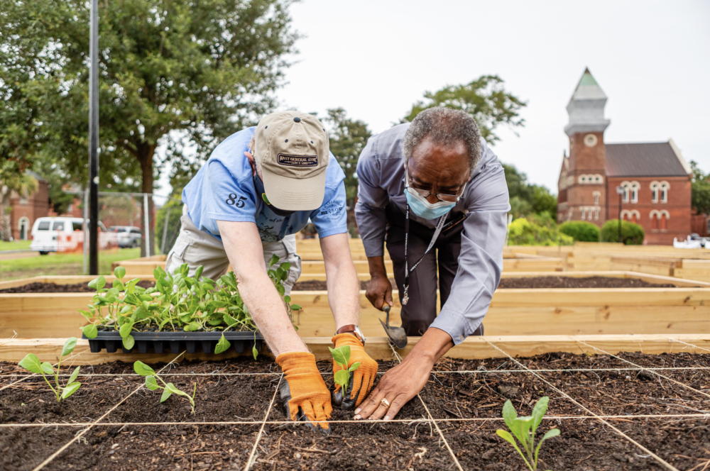 First Planting of the Urban Farm at Enston Home – COME GROW WITH US!